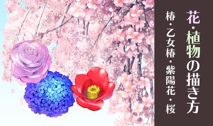 和の花・植物の描き方4選(椿・乙女椿・紫陽花・桜)