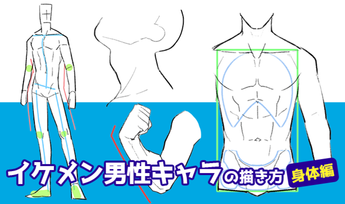 男性らしいセクシーさを演出!イケメン男性キャラの描き方・身体編