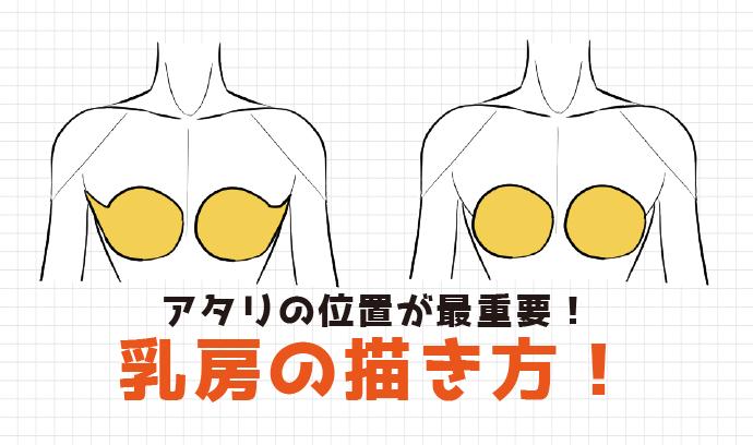 アタリの位置が最重要!乳房の描き方!