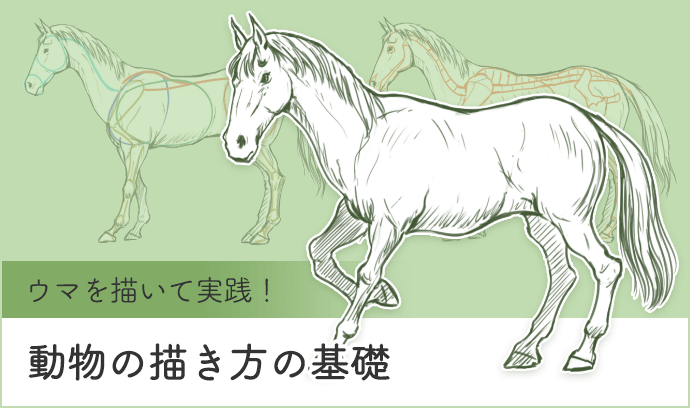 ウマを描いて実践! 動物の描き方の基礎