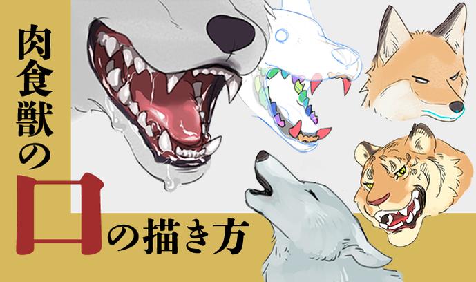 肉食獣の口の描き方