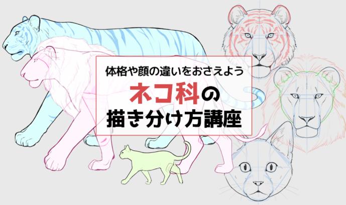体格や顔の違いをおさえよう! ネコ科の描き分け方講座