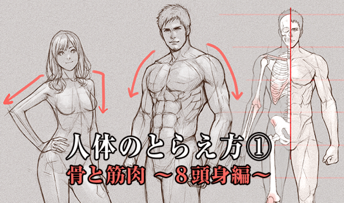 人体のとらえ方① 骨と筋肉 ~8頭身編~