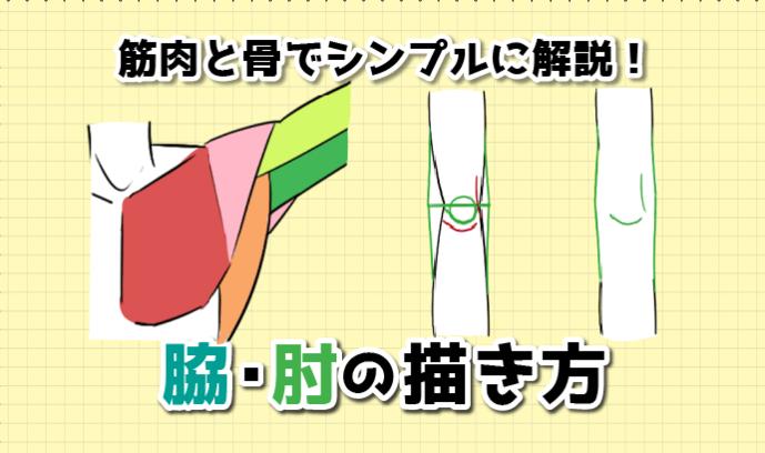 筋肉と骨でシンプルに解説! 脇・肘の描き方!